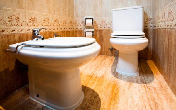 Toilet Tune-up