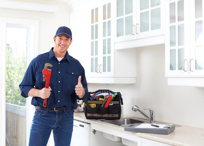 professional kaneohe plumbers