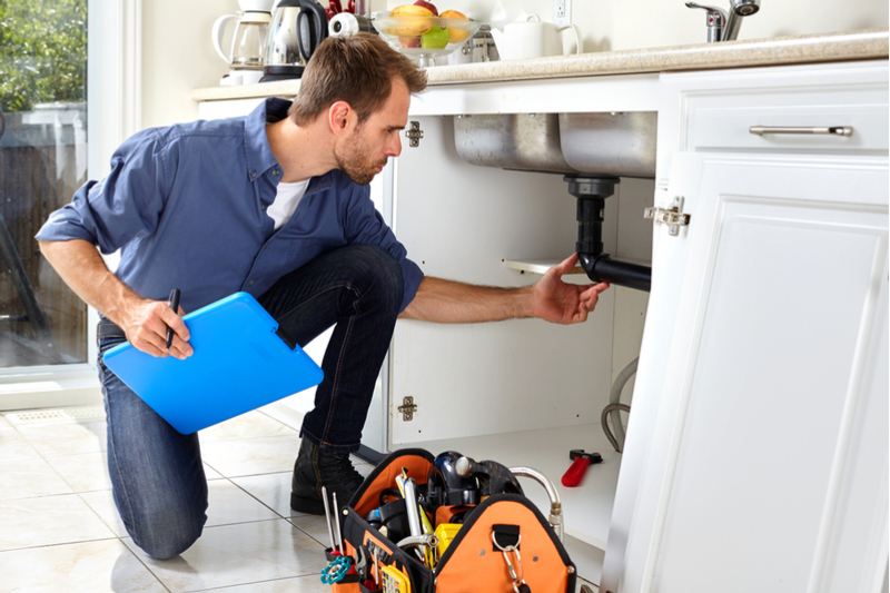 professional pearl city plumbers